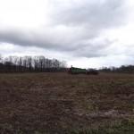 Walking around the country side in Sutthausen. That is the fertilizer truck - stink-y!