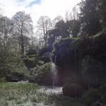 Blarney Castle - Bog Garden