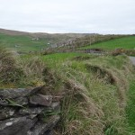 Co. Cork - Beara Peninsula  drive