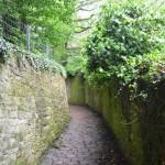 heading back down the Schlangenweg