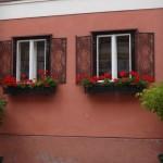 cute house in Melk